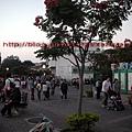 DSCN1505.jpg
