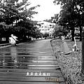 台東旅行趣77