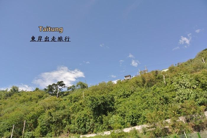 台東旅行趣258