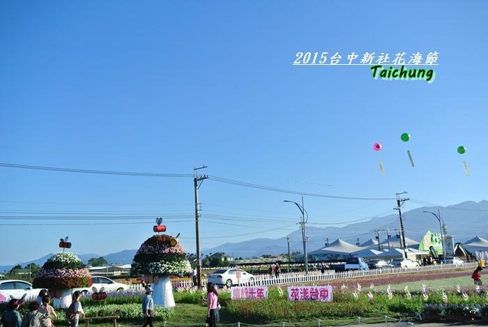 台中新社花海6