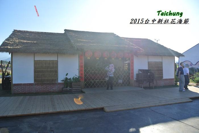 台中新社花海12