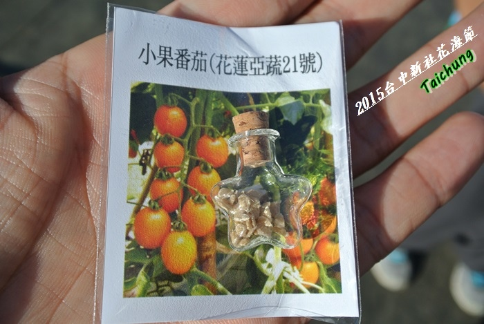 台中新社花海23