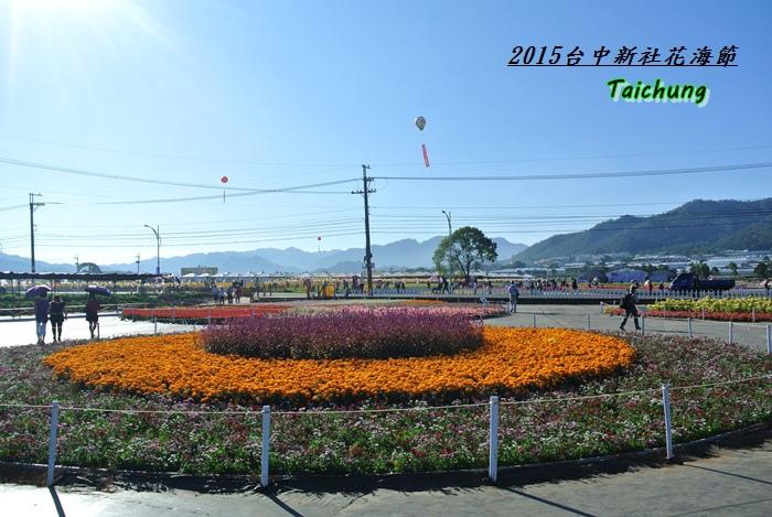 台中新社花海38