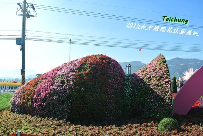 台中新社花海49