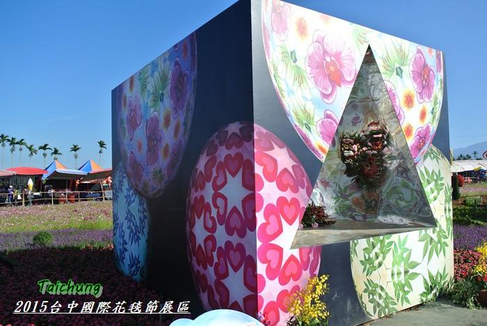 台中新社花海61