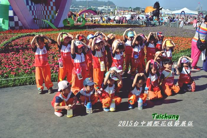 台中新社花海62
