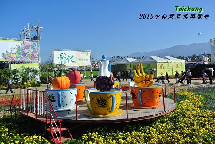 台中新社花海78