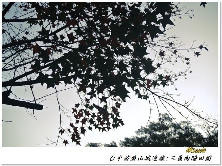台中苗栗山城旅行74
