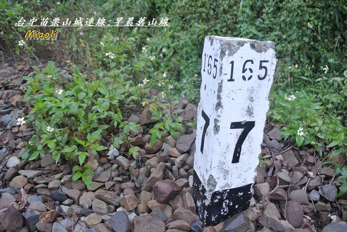 台中苗栗山城旅行99