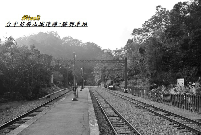 台中苗栗山城旅行130
