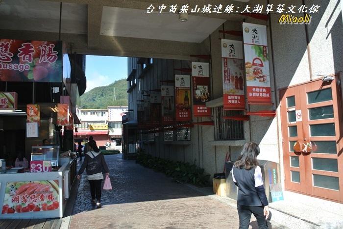 台中苗栗山城旅行157.JPG