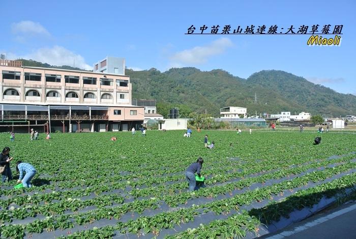 台中苗栗山城旅行161