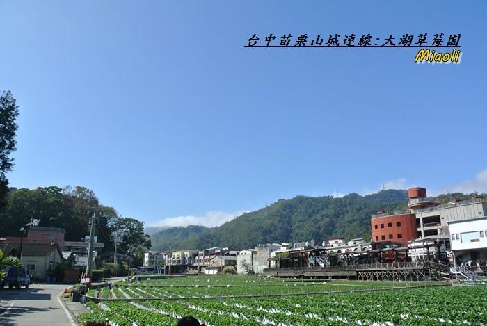 台中苗栗山城旅行162