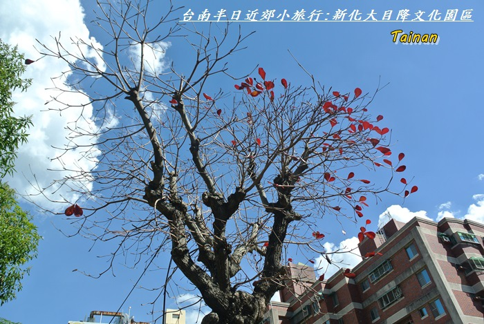 台南近郊半日旅13