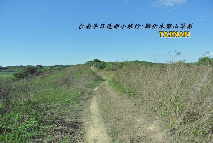 台南近郊半日旅39