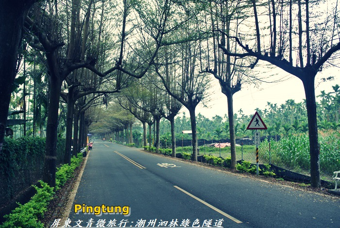 屏東微旅行29