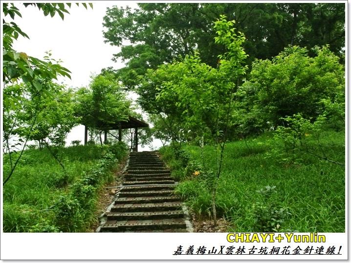 嘉義梅山+雲林古坑連線6.JPG