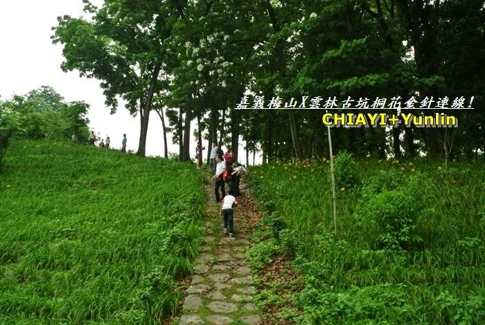 嘉義梅山+雲林古坑連線11