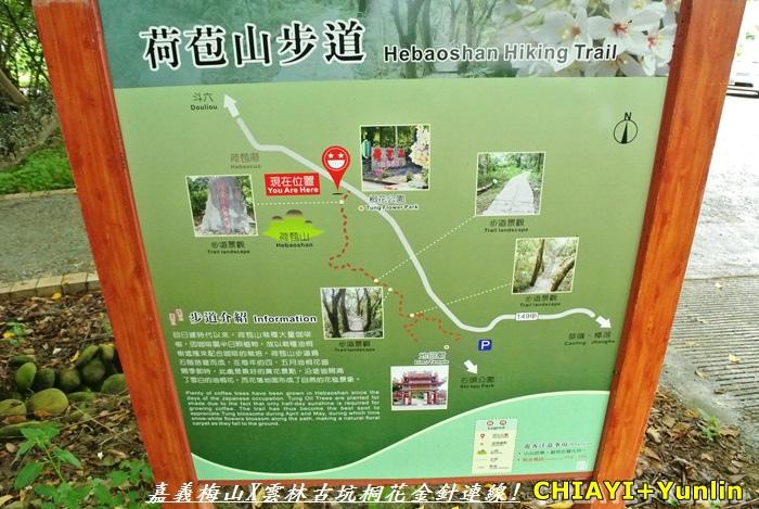 嘉義梅山+雲林古坑連線20