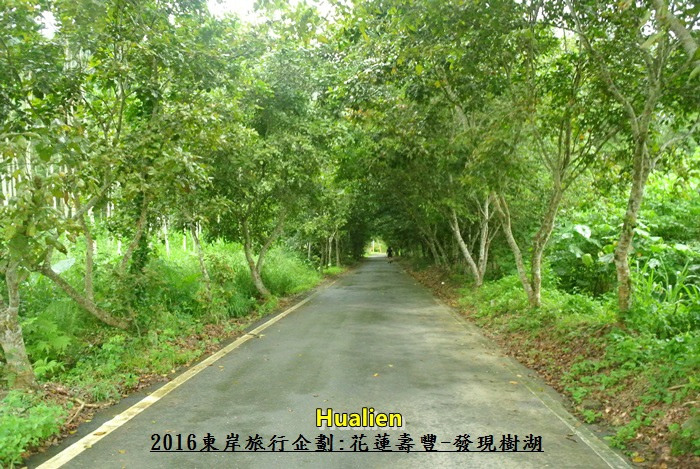 2016東岸旅行啟程266