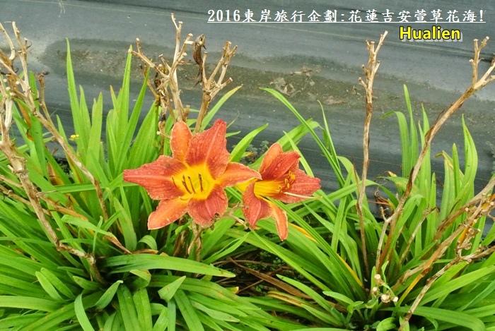 2016東岸旅行啟程330