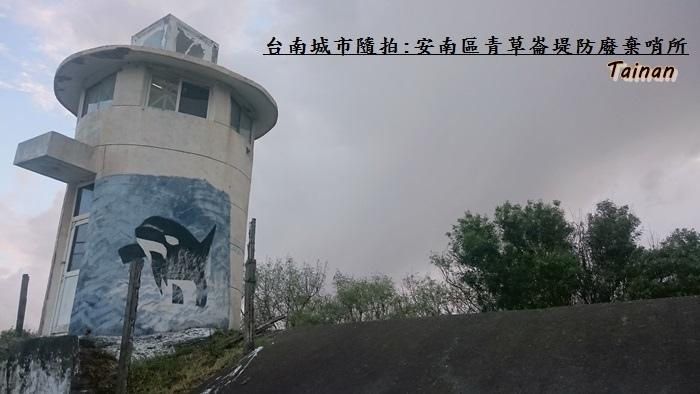 青草崙堤防2