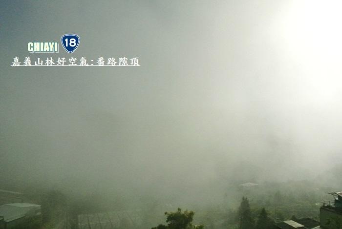 嘉義山林好空氣5