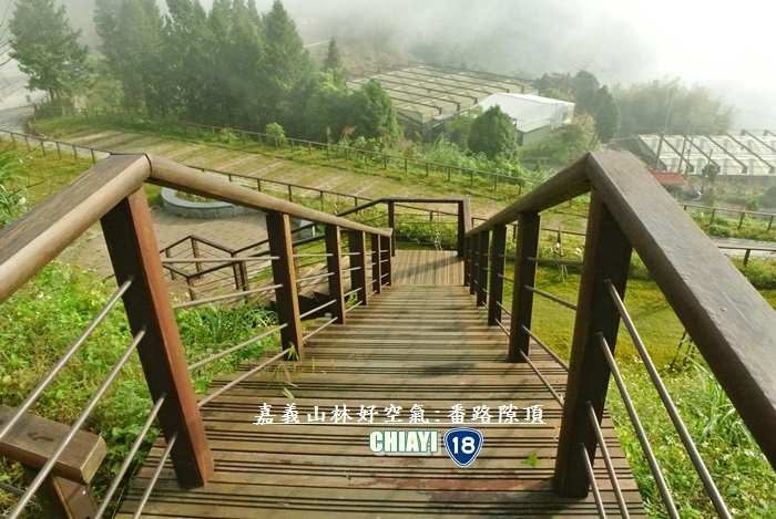 嘉義山林好空氣8