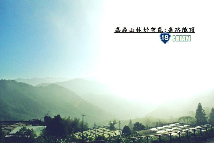 嘉義山林好空氣12