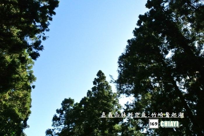 嘉義山林好空氣15