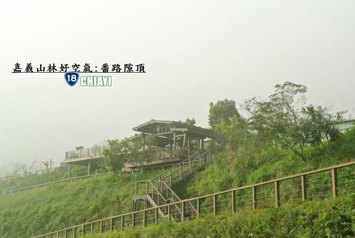 嘉義山林好空氣14