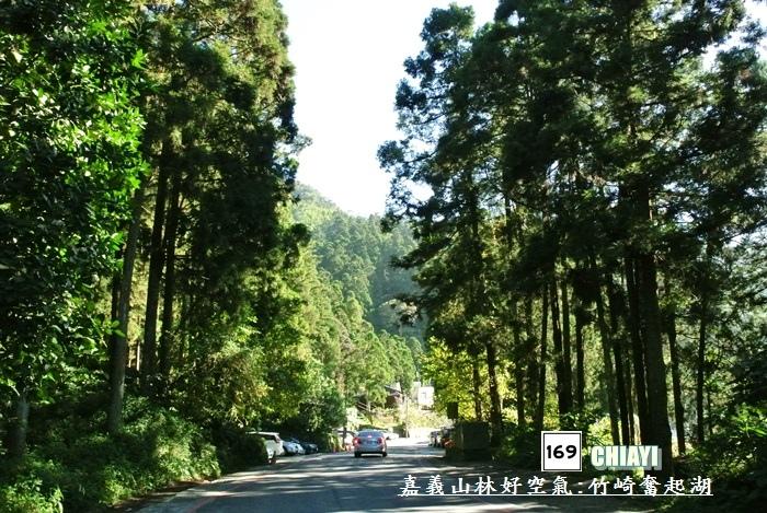 嘉義山林好空氣16