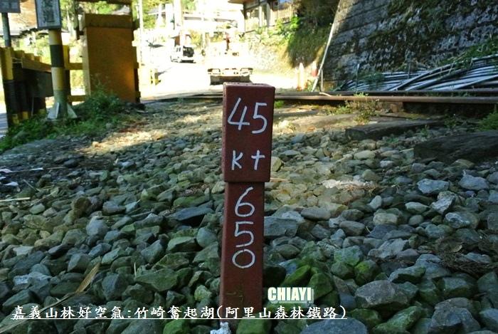 嘉義山林好空氣24