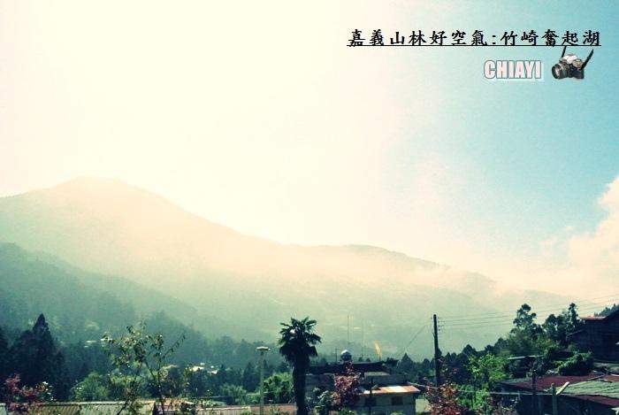 嘉義山林好空氣38