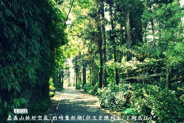 嘉義山林好空氣44