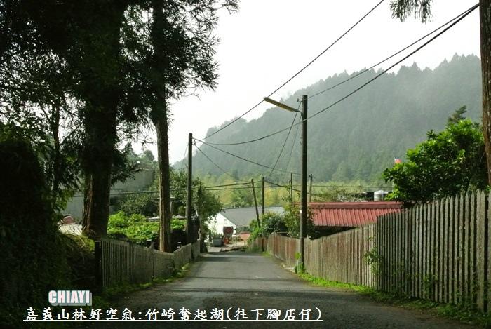嘉義山林好空氣46
