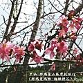 甲仙-那瑪夏機車旅行59
