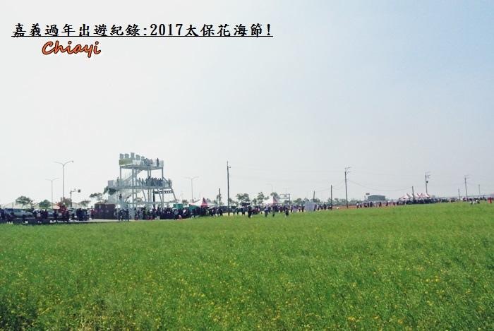 2017太保花海紀錄2.JPG