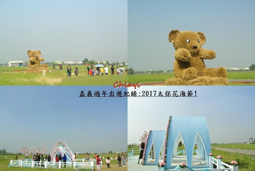 2017太保花海紀錄9.jpg