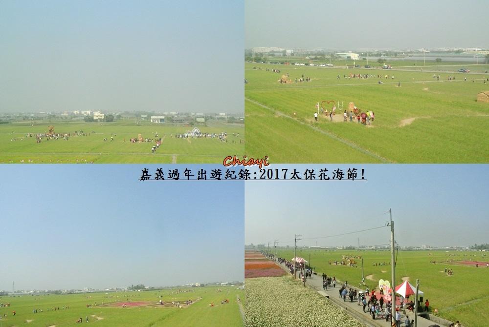 2017太保花海紀錄18.jpg
