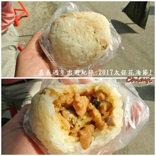 2017太保花海紀錄14.jpg