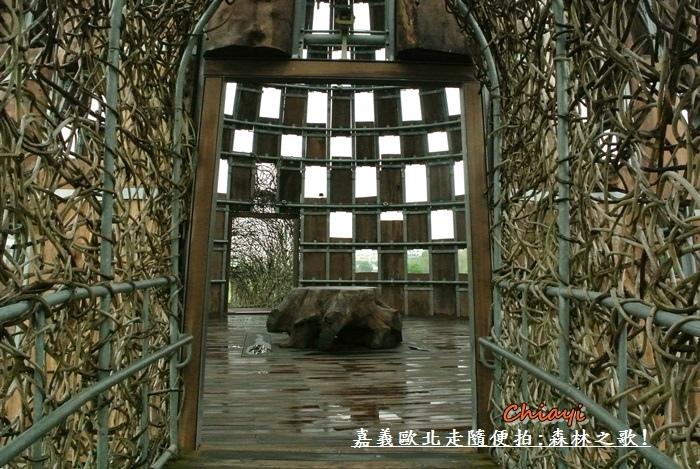 嘉義歐北走-森林之歌7.JPG