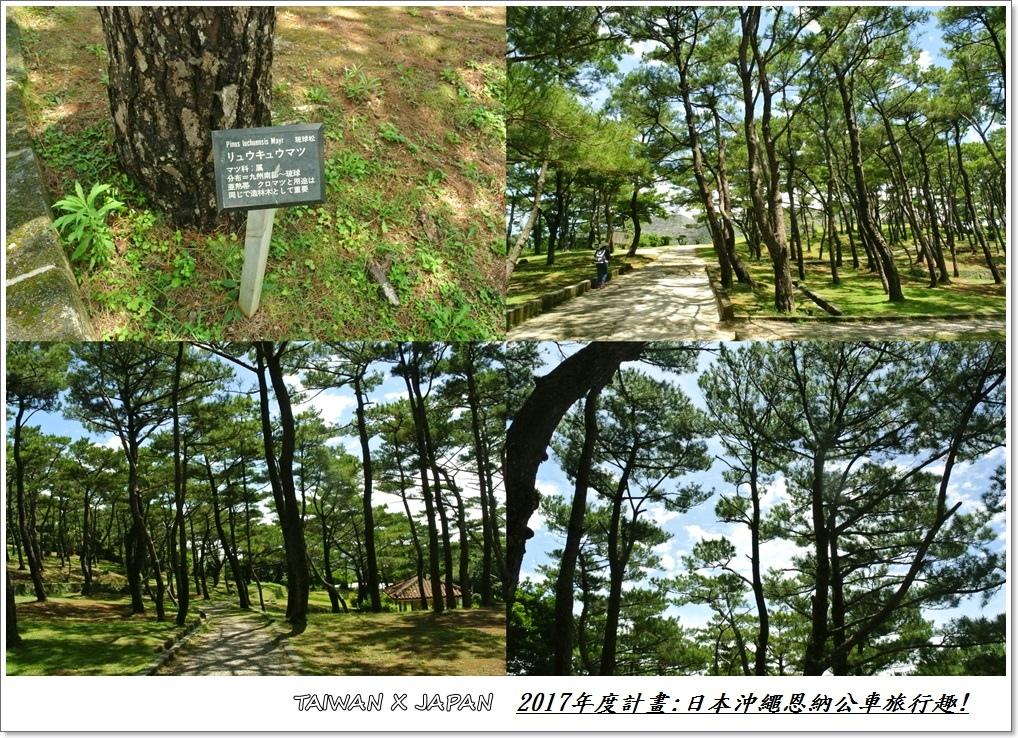 日本沖繩旅行122.jpg
