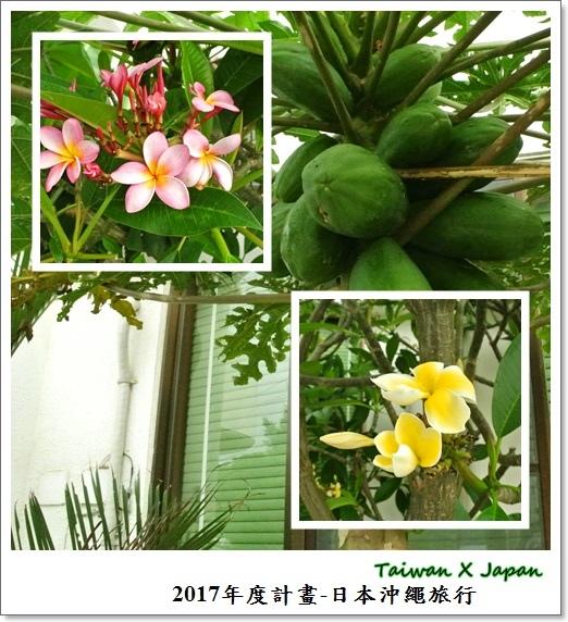 日本沖繩旅行172