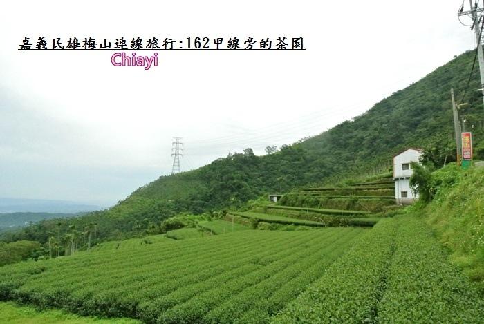 嘉義梅山太平24.JPG