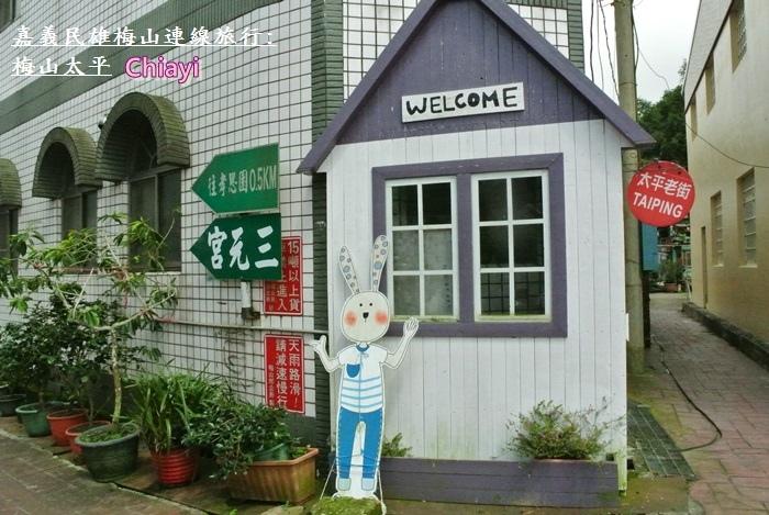 嘉義梅山太平28.JPG