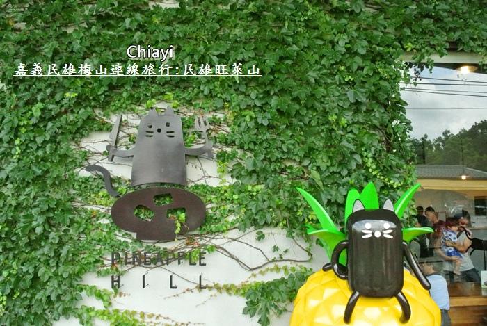 嘉義民雄旺萊山3