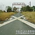 台南六甲菁埔埤落羽松10.JPG