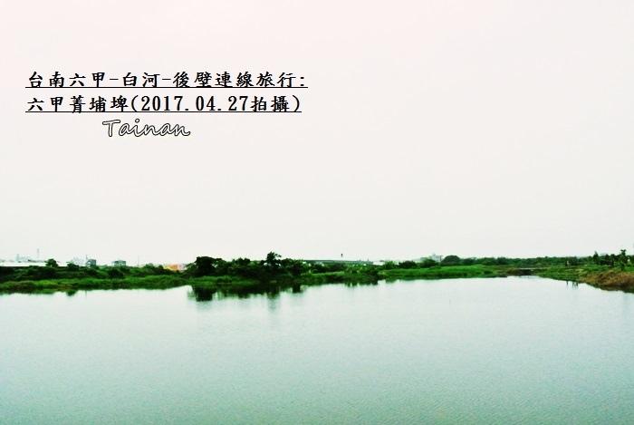 六甲菁埔埤春天景色5.JPG