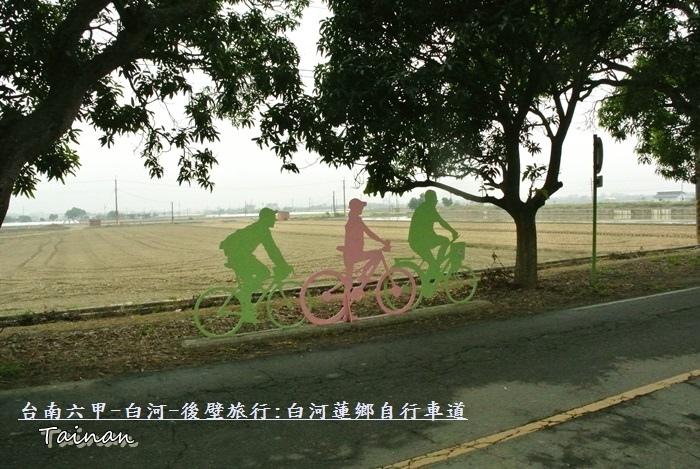 台南白河蓮鄉自行車道2.JPG